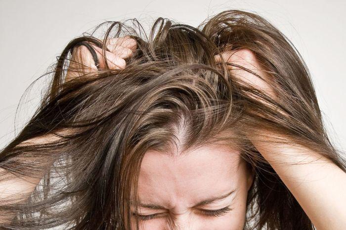 26118_rambut-sehat-dan-ketombe-hilang